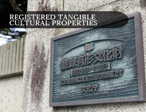 REGISTERED TANGIBLE CULTURAL PROPERTIES